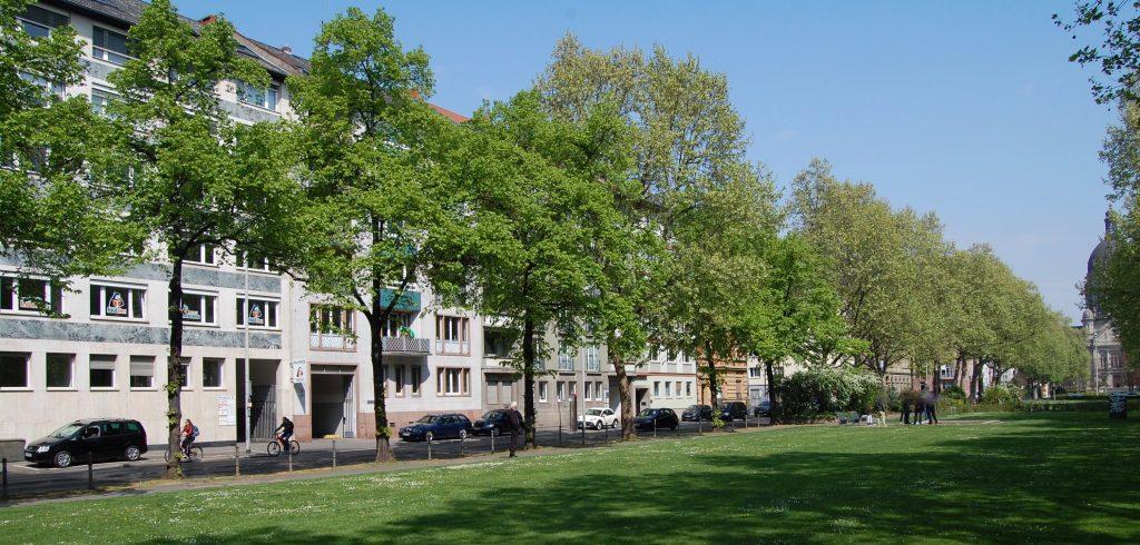 Faultier Mainz Kaiserstraße